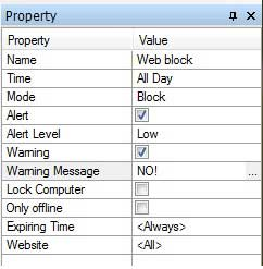 Website Policy Property